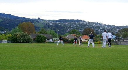 Players on repaired cricket pitches